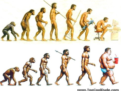 ape-man-evolution